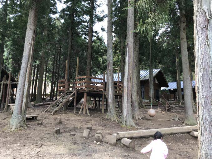 森のひととき