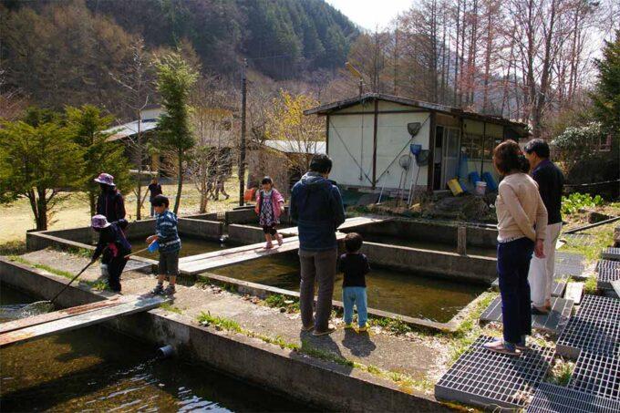 くるみ温泉&キャンプの釣り堀